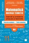 MATEMATICA M1 CL 11 BREVIAR