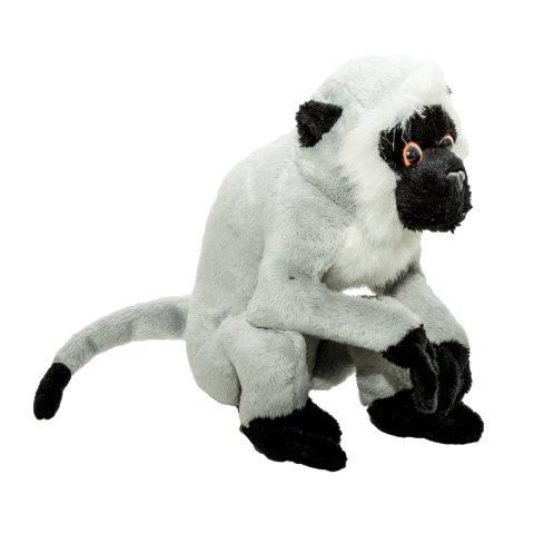 Plus Momki,Maimuta vervet,165cm