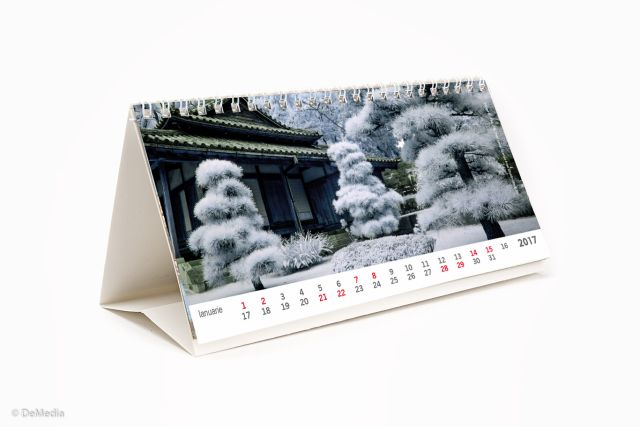 Calendar birou 21x11cm,Gradini,12f,2017