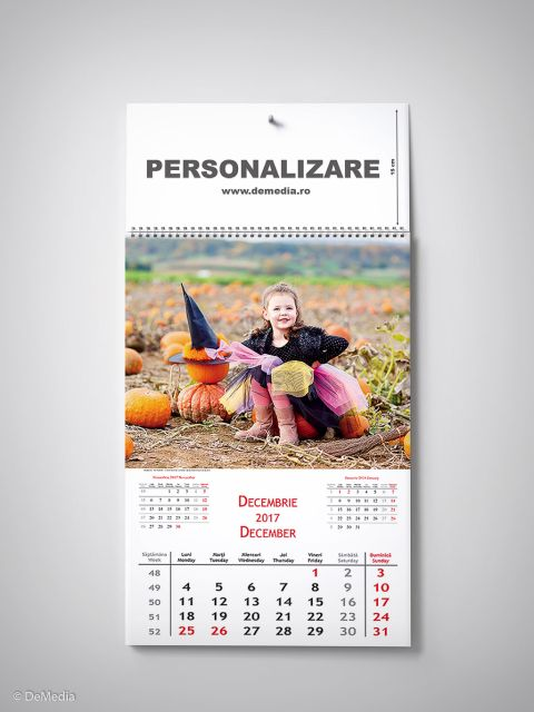 Calendar perete 32x48cm,Copii,12f,2017