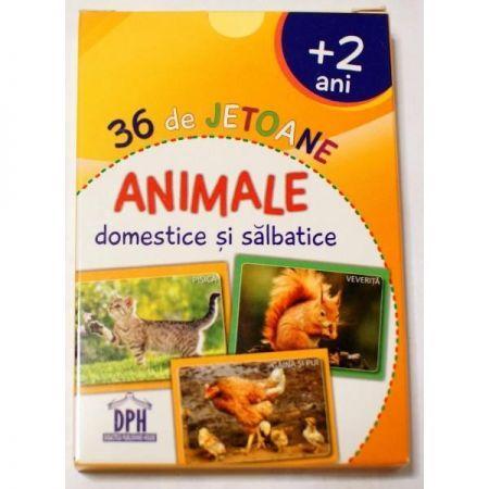 ANIMALE DOMESTICE SI ANIMALE SALBATICE