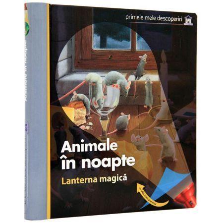 ANIMALE IN NOAPTE (CU LANTERNA MAGICA)