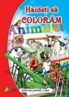 HAIDETI SA COLORAM! - ANIMALE