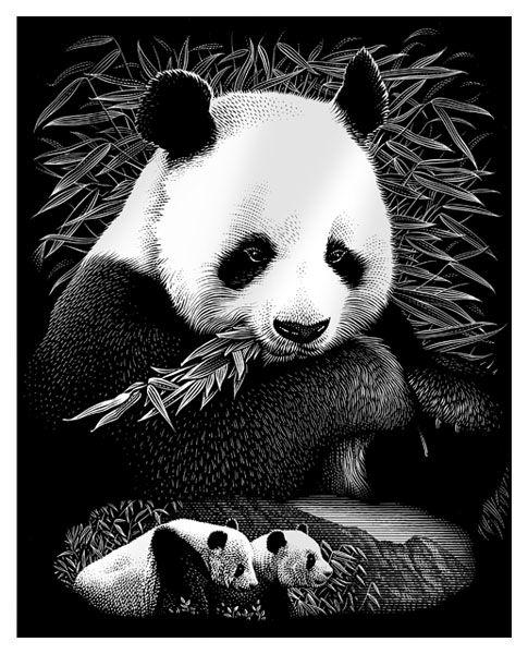 Gravura pe numere,Reeves,Pandas