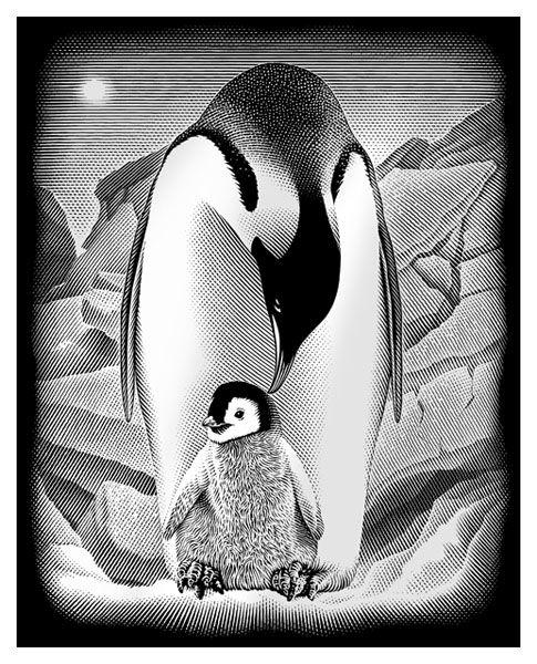 Gravura pe numere,Reeves,Penguins