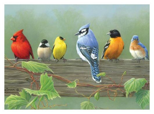 Pictura pe numere,Reeves,Rail birds