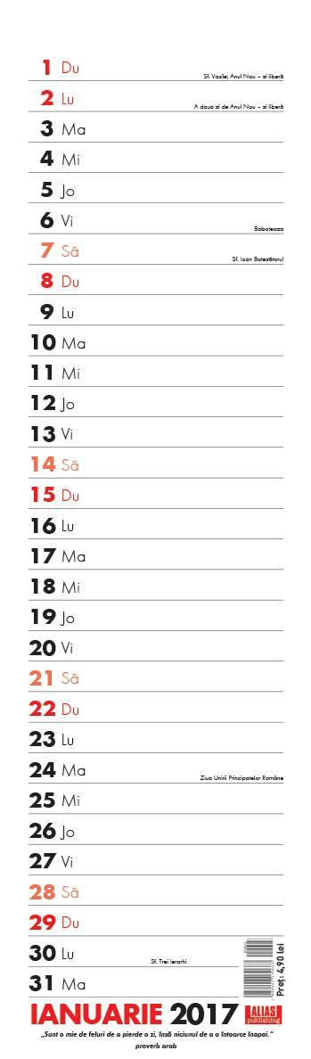 Calendar perete planner,12f,2017