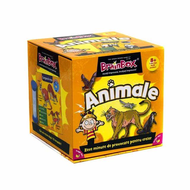 Brainbox-Animale
