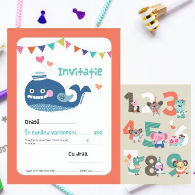 Invitatii de petrecere111620b/set
