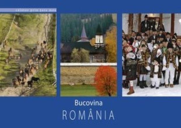 Bucovina, Florin Andreescu