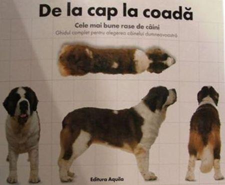 DE LA CAP LA COADA