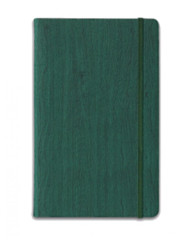 Agenda 13x19cm,Gardena,dictando,verde