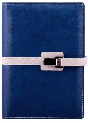 Agenda datata 17x24cm,Clip,zilnica,352p,ivoire,cu pix,albastru