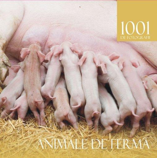 1001 ANIMALE DE FERMA .