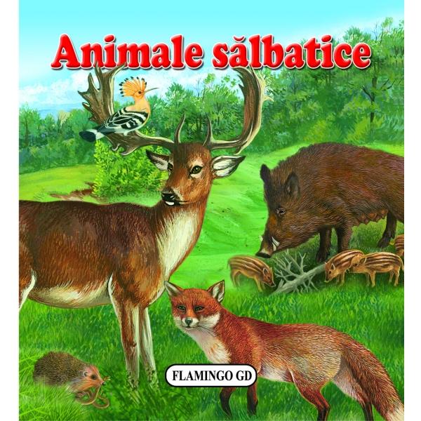 ANIMALE SALBATICE  CARTONATA
