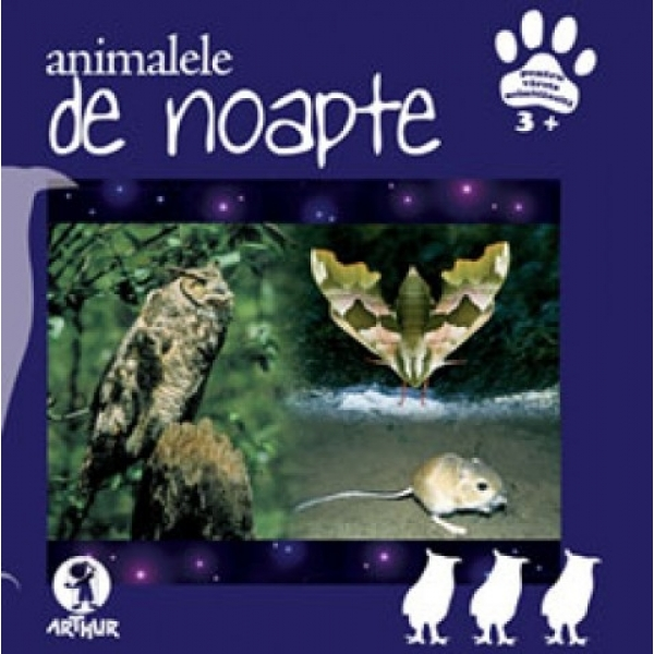 ANIMALELE DE NOAPTE