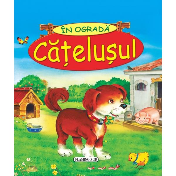 CATELUSUL