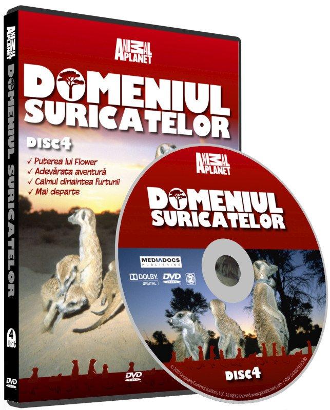 DOMENIUL SURICATELOR 4-DOMENIUL SURICATE