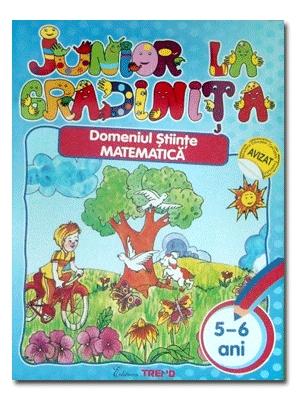 DOMENIUL STIINTE MATEMATICA 5-6 ANI