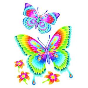 Efectul culorii Fluturi
