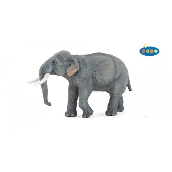 Elefantul asiatic