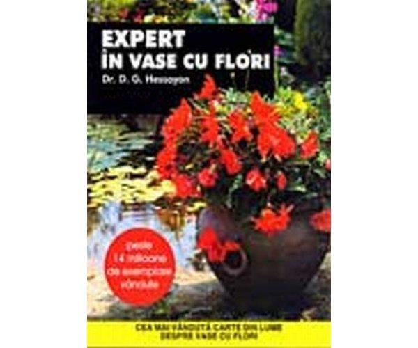 EXPERT IN VASE CU FLORI