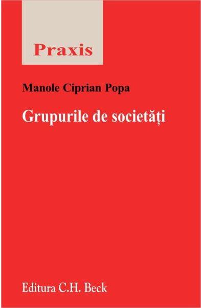 GRUPURILE DE SOCIETATI