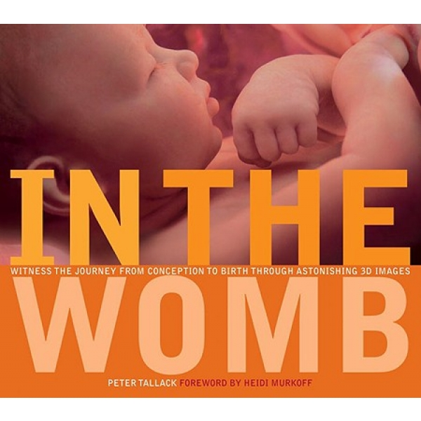 In The Womb, Peter Tallack