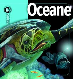 INSIDERS - OCEANE