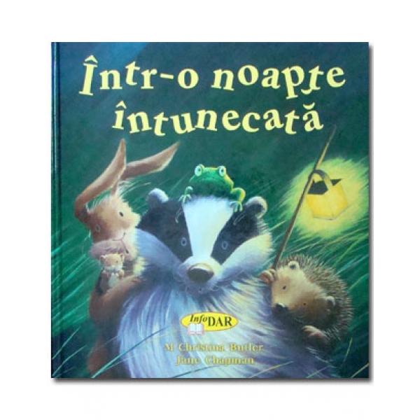 INTR-O NOAPTE INTUNECAT A