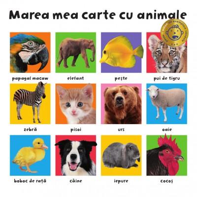 MAREA MEA CARTE CU ANIMALE