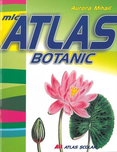 MIC ATLAS BOTANIC