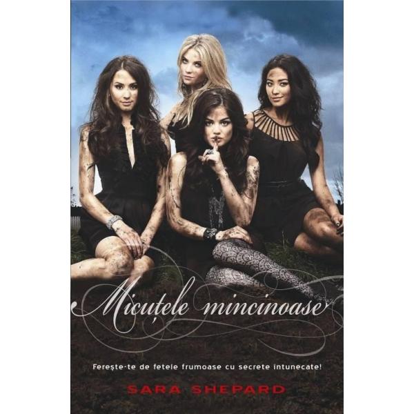 MICUTELE MINCINOASE 1
