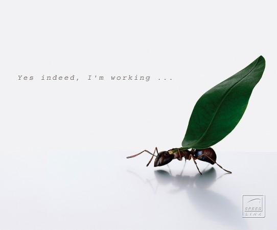 Mouse pad Speedlink Silk, Working Ants