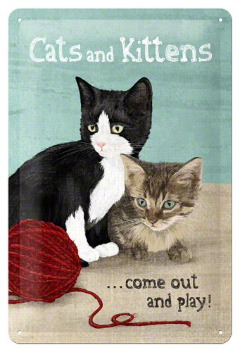 PLACA 20x30 CATS AND KITTENS