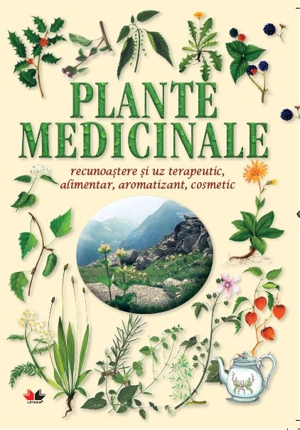 PLANTE MEDICINALE. RECUNOASTERE SI UZ TERAPEUTIC, ALIMENTAR, AROMATIZANT, COSMETIC