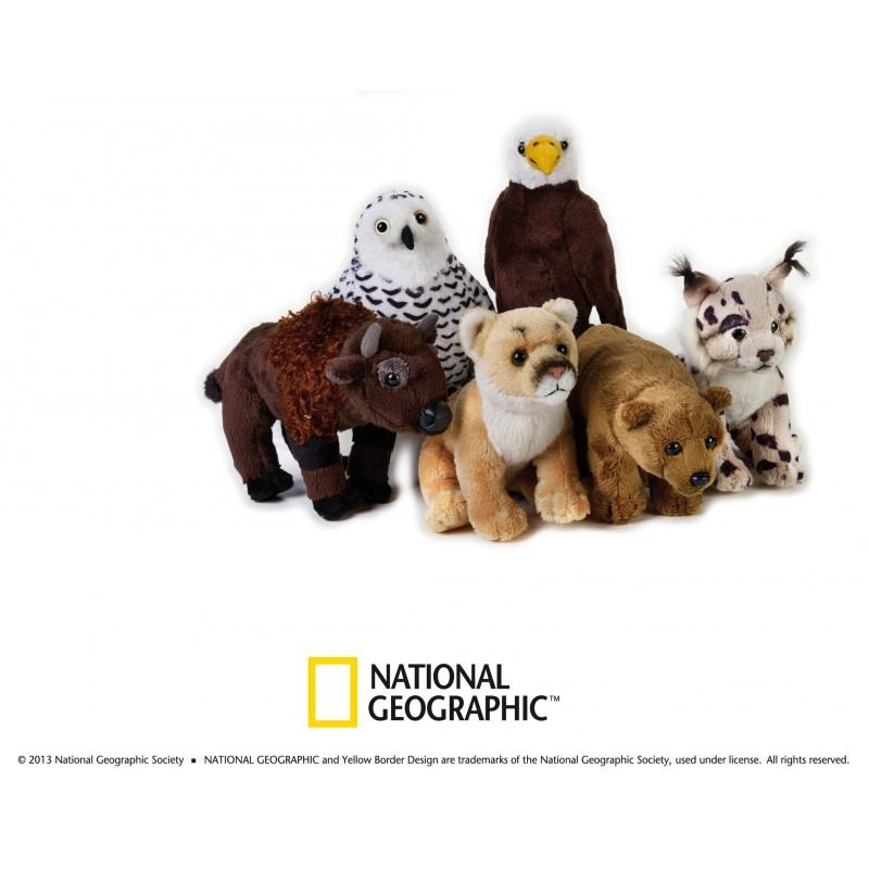Plus NG,Animal America de nord,18cm,asortate