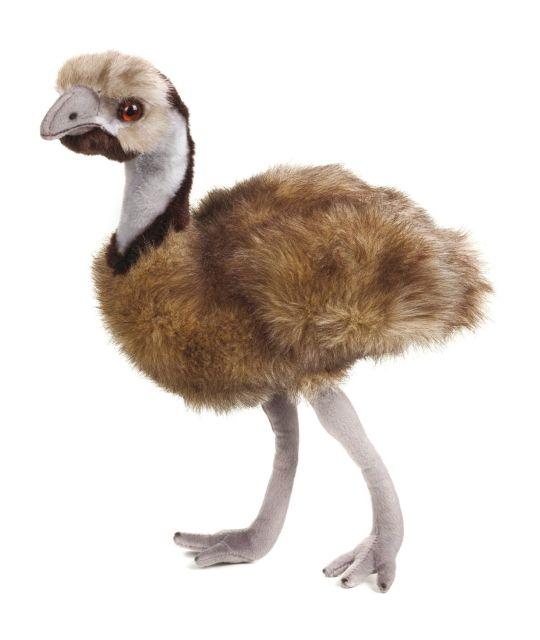 Plus NG,EMU 44cm