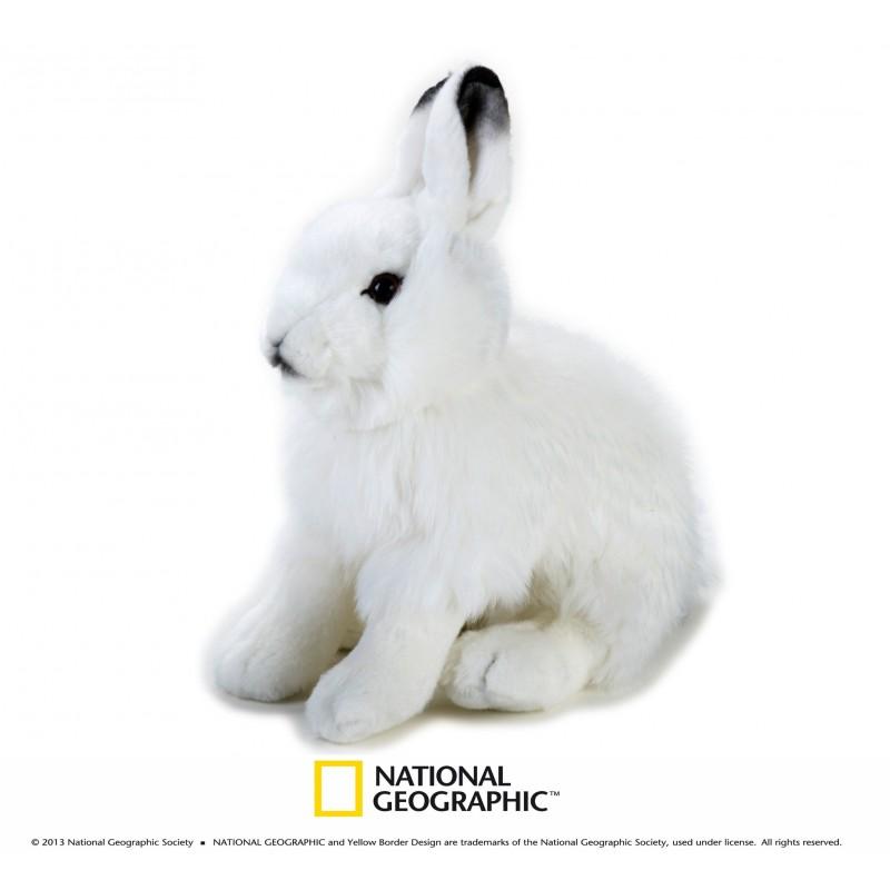 Plus NG,Iepure polar,25cm