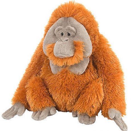 Plus Wild Republic,Urangutan,30cm