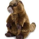 Plus,Marmota,25cm