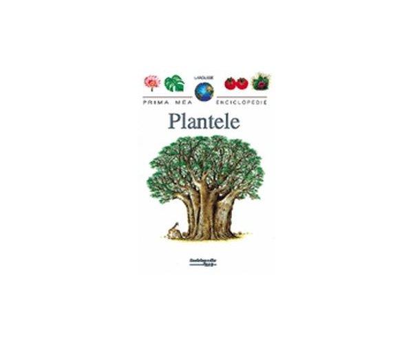 PME - PLANTELE