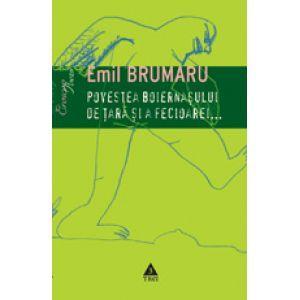 Povestea boernasului de tara si a fecioarei, Poezie erotica, Emil Brumaru
