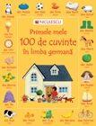 PRIMELE MELE 100 DE CUVINTE IN LIMBA GERMANA