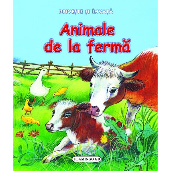 PRIVESTE SI INVATA - ANIMALE DE LA FERMA