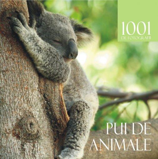 1001 PUI DE ANIMALE .