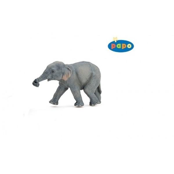 zzPui de elefant asiatic