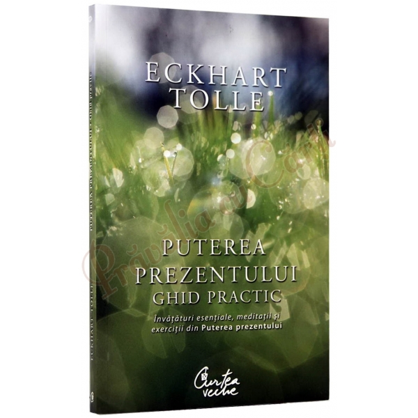 Puterea prezentului.Ghid practic reeditare, Tolle Eckhart
