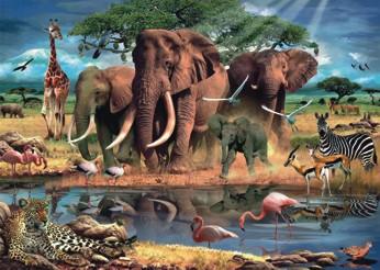 Puzzle Africa, 1000 piese