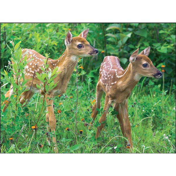 Puzzle Animale pui, 99 piese(4 modele asortate)